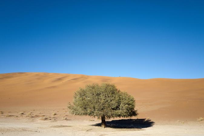 Grégoire De Poorter - grevision - Namibia - Sossusvlei - dunes
